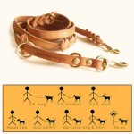 Multi-Function Leather Leash