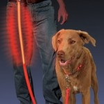 Karen Pryor Nite Dawg Leash